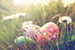 Read more about the article Easter Candy