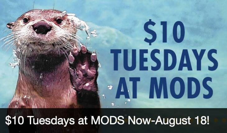 "Museum of Discovery and Science Announces ""$10 Tuesdays at MODS"" Summer Promotion"