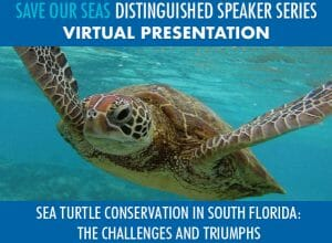 Read more about the article Save Our Seas Distinguished Speaker Series