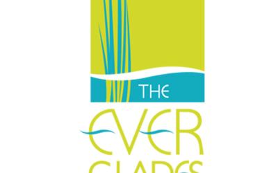 the everglades foundation