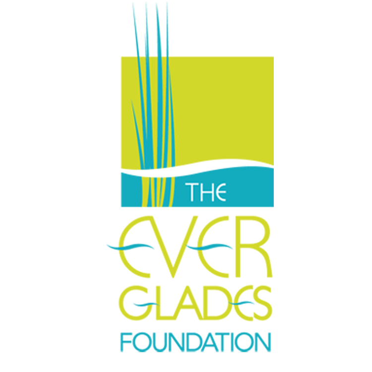 You are currently viewing The Everglades Foundation and Museum of Discovery  and Science Unite to Expand Everglades Education in  Broward County